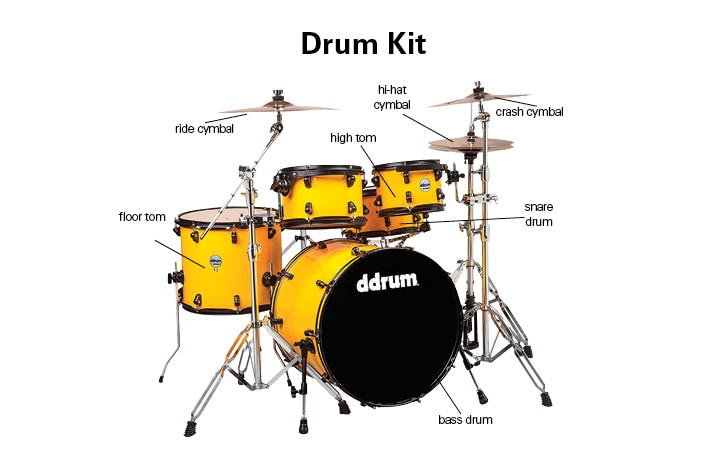 Buyer Guides - Drum Kit Guide : The Music Room