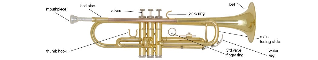 Trumpet Buying Guide & Comparison Chart | Woodwind & Brasswind : The