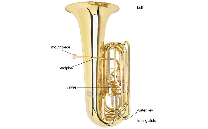 Tuba Buyer's Guide & Comparison Chart | WWBW com : The Music