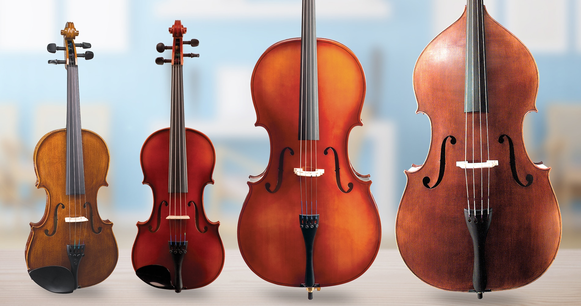 Getting to Know The Bellafina Model 50 Violin Outfit